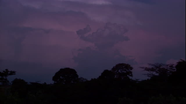 Lightning flashes within ominous purple clouds. Available in HD.