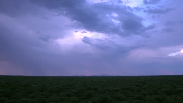 lightning strikes in a purple sunset - thunderstorm stock videos & royalty-free footage