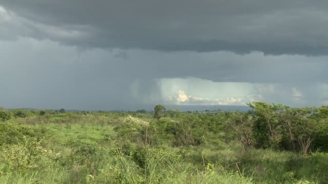 Lightning strikes on the horizon in the countryside. Available in HD.