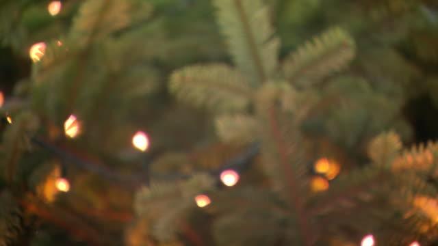 vídeos de stock e filmes b-roll de lights on christmas tree - decoração de natal