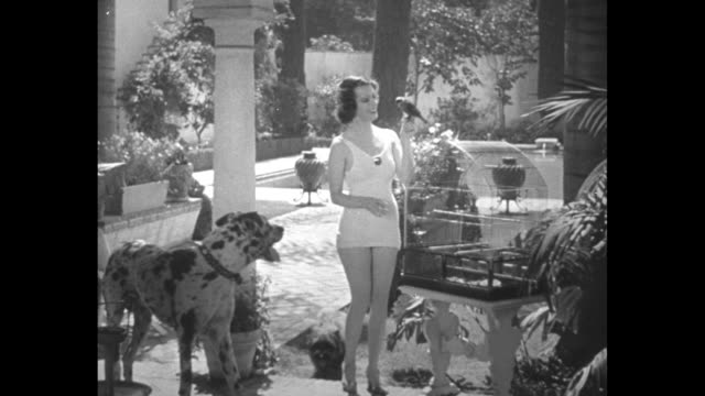 lily pons in bathing suit with her two dogs in garden of her home walking towards camera with her parrot on her hand / closer shot of pons with her... - pons stock videos & royalty-free footage