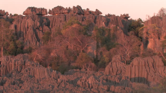 WS, PAN, Limestone rock formations in Tsingy De Bemarha National Park, Madagascar