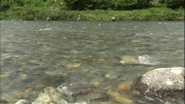 Limpid water of Nagara river.