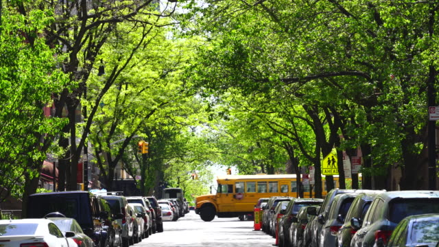 line of fresh green trees surround the street at upper east manhattan new york. - cars parked in a row stock videos & royalty-free footage