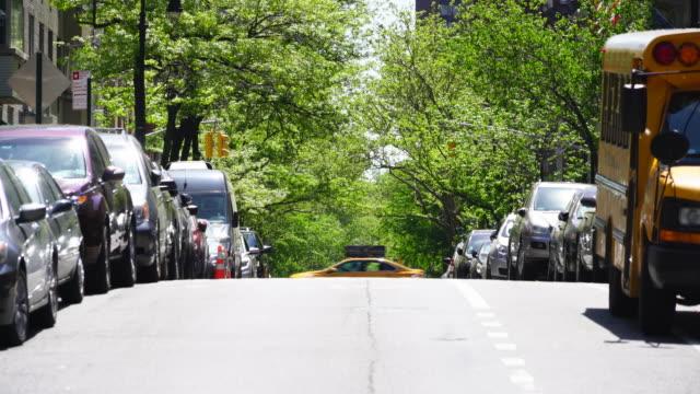 Line of fresh green trees surround the street at Upper East Manhattan New York.