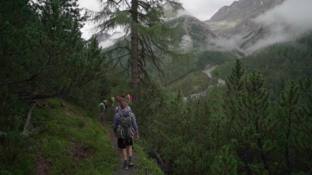 vídeos y material grabado en eventos de stock de línea de excursionistas navega camino boscoso en las montañas - dirt road