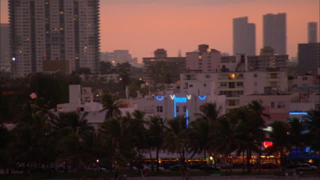 a line of palm trees divides the beach from city streets in miami's south beach. - south beach stock videos & royalty-free footage