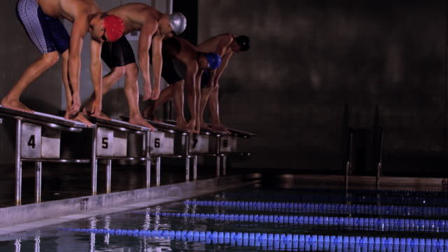 slo mo. a line of professional swimmers stand on platforms and get into position to dive in before a race begins during a swim meet in an indoor olympic sized swimming pool - swimming stock videos & royalty-free footage