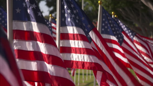 a line of windblown american flags stretches in the distance - veterans day stock videos & royalty-free footage