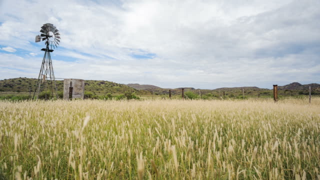 linear vertical timelapse of a windmill on an overcast day with scattered clouds and long green grass in the foreground on a typical karoo farm - karoo bildbanksvideor och videomaterial från bakom kulisserna