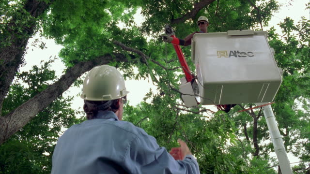 cs slo mo ms linemen cutting tree branches using bucket truck / austin, texas, usa - see other clips from this shoot 1842 stock videos & royalty-free footage