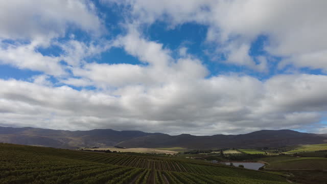 lines of vineyards mountains and moving cloud cover copy space - hermanus stock videos & royalty-free footage