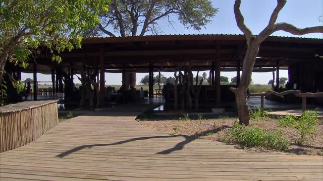 linyanti wildlife reserve at kings pool camp on june 14, 2010 in botswana - ボツワナ点の映像素材/bロール