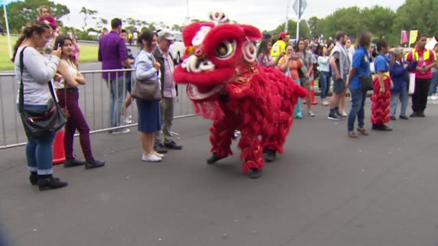 lion and dragon performances at the chinese lantern festival for lunar new year celebrations in auckland domain - chinese lantern festival stock videos and b-roll footage