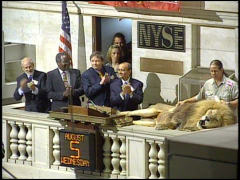 a lion at the the ring opening bell - new york stock exchange bildbanksvideor och videomaterial från bakom kulisserna