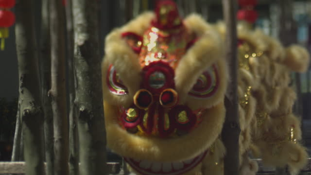 lion dance - animal imitation stock videos and b-roll footage