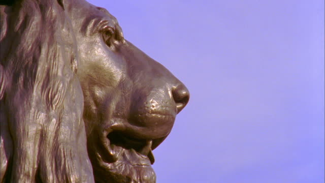 cu pan lion guarding nelson's column against clear sky, trafalgar square, london, england - nelson's column stock videos & royalty-free footage