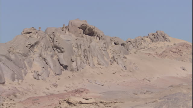 vidéos et rushes de lion pride on desert outcrop, skeleton coast, namibia. available in hd. - outcrop