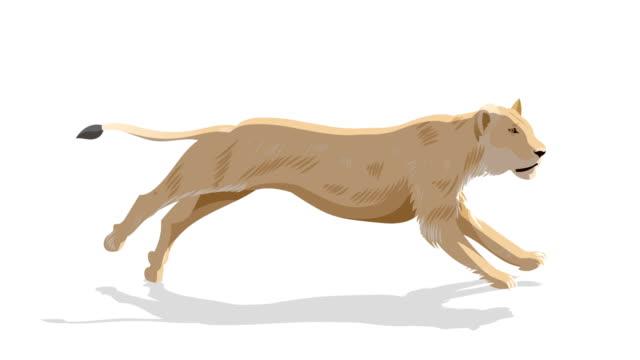 lion running animation - charakterkopf stock-videos und b-roll-filmmaterial
