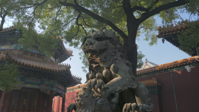 stockvideo's en b-roll-footage met ws lion statue at yonghe temple, beijing, china - {{relatedsearchurl(carousel.phrase)}}