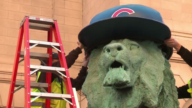 WGN Lion Statues in Front of Chicago Art Institute Fitted With Cubs Helmets after the Cubs won the National League Pennant on Oct 24 2016
