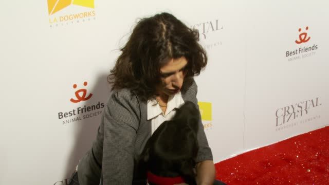 lisa edelstein at the crystal canine presented by swarovski and la dogworks at la dogworks in los angeles california on april 23 2007 - lisa edelstein stock videos and b-roll footage