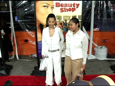 lisa raye at the 'beauty shop' world premiere at the mann national theatre in westwood california on march 24 2005 - mann national theater stock videos and b-roll footage
