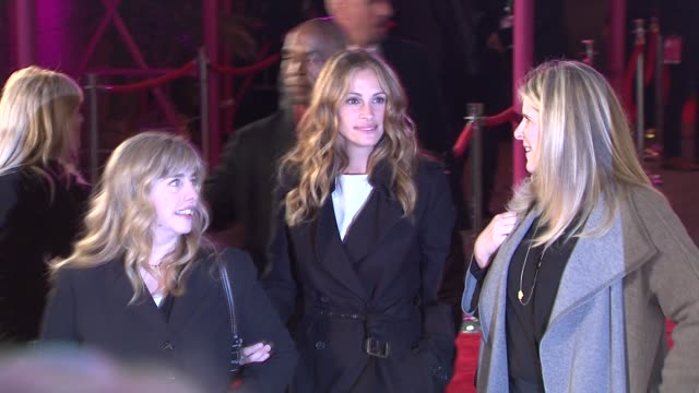 lisa roberts gillan and julia roberts at the 2011 tribeca film festival - premiere of 'jesus henry christ' at new york ny. - julia roberts stock videos & royalty-free footage