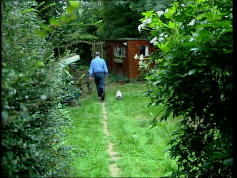 author philip pullman interviewed england oxford writer philip pullman along through garden and into shed where he writes philip pullman interviewed... - algae stock videos & royalty-free footage