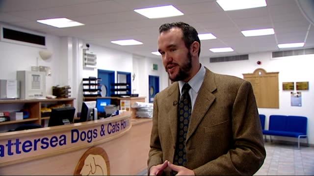 charles dickens bicentenary celebrations: battersea dogs home link; old photograph of the dogs home photograph of dickens sat in chair next dog... - charles dickens bildbanksvideor och videomaterial från bakom kulisserna
