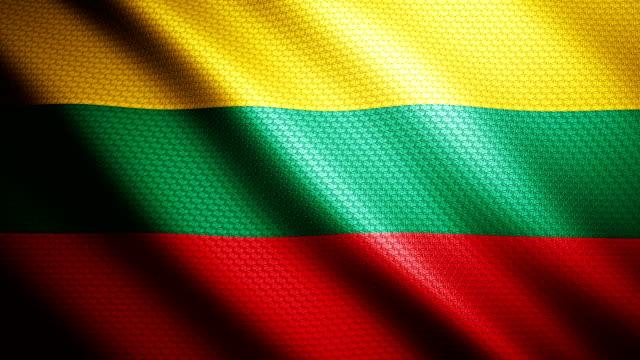 Lithuania flag 4K
