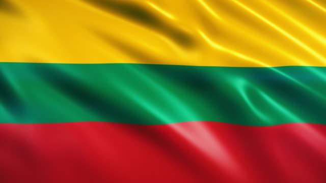 vídeos y material grabado en eventos de stock de bandera de lituania - desigual con textura