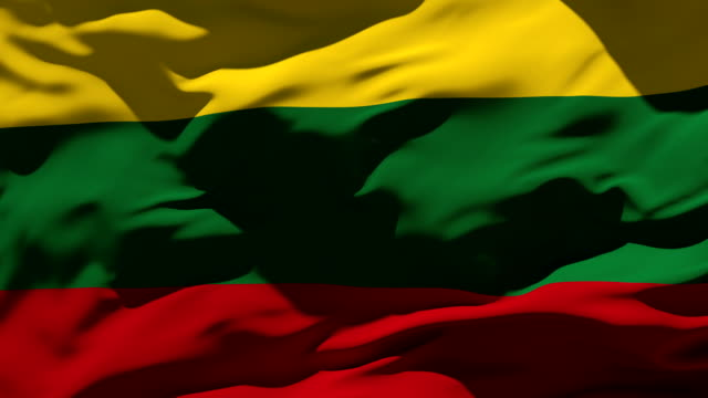 lithuania flag - lithuania stock videos and b-roll footage