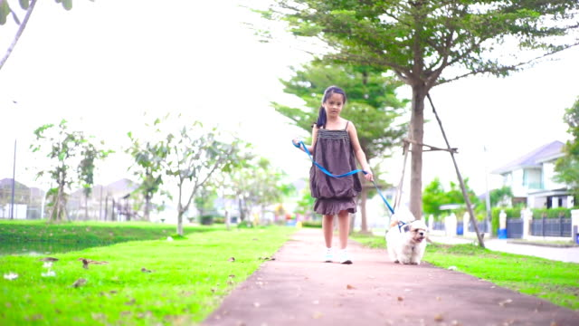 A litle girl walking with the dog on the walkway in the park.