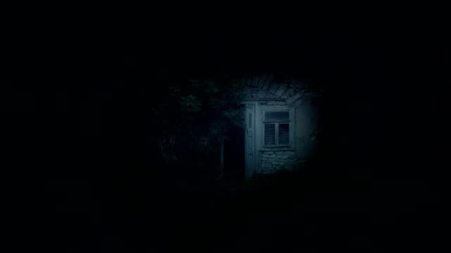 little abandoned fairy house hut at night - barn stock videos & royalty-free footage