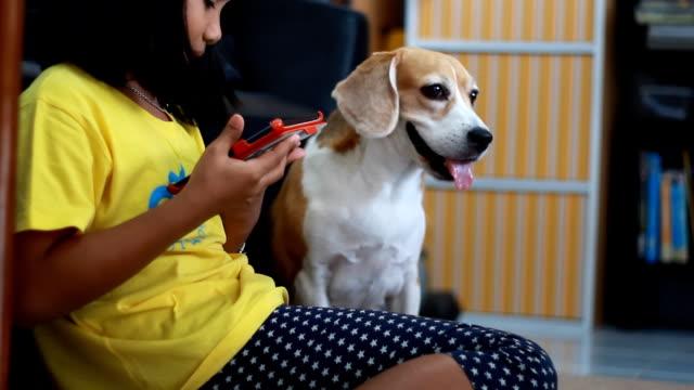 Little african 女の子は彼女のタブレットを使用して彼女のビーグル犬タブレットでお探しですか