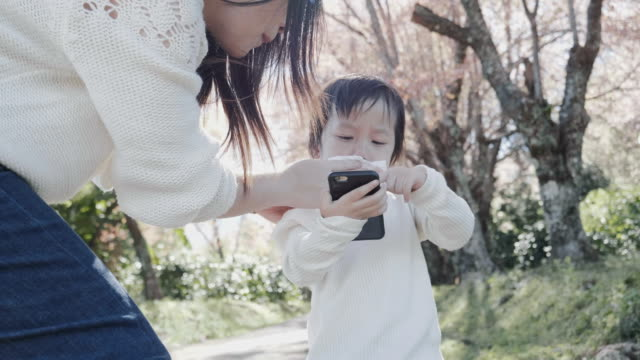 Little anger Thai baby boy is trying to play game that his mother is support and help him to open game in smart phone while they are traveling at the sakura garden with natural environment