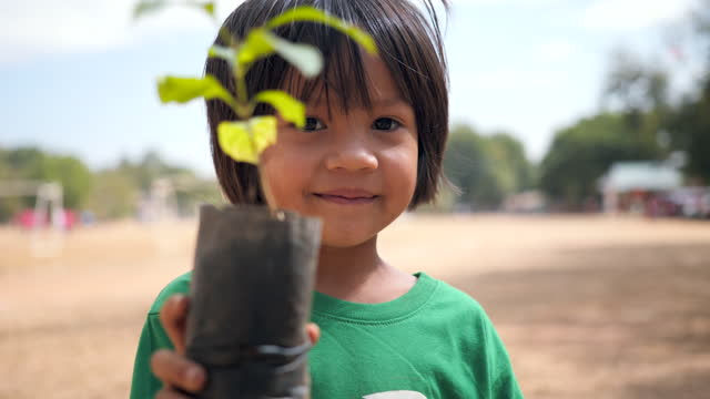 little asian girl holding young plant in hands against spring green background. - ecosystem stock videos & royalty-free footage