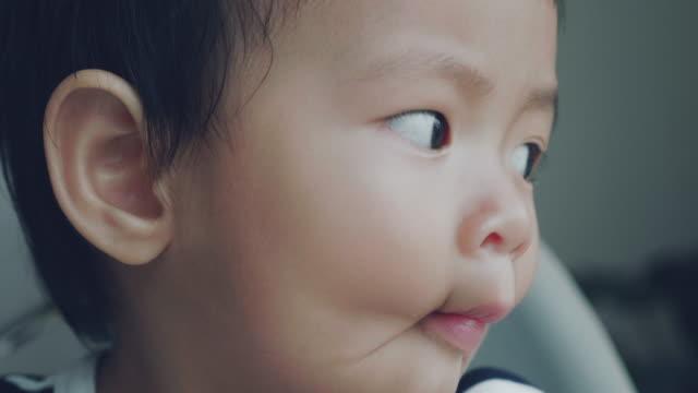 baby jungen (6-11 monate) schauen aus dem fenster - nur babys stock-videos und b-roll-filmmaterial