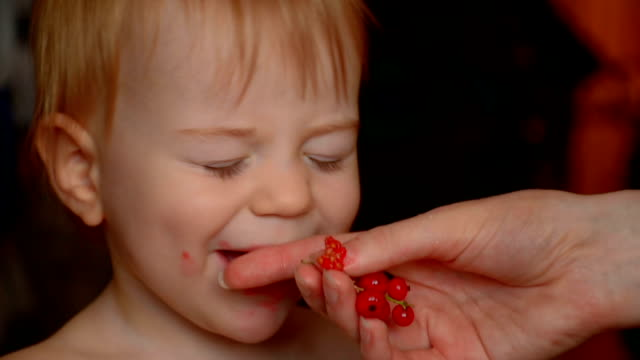 Little baby eating redcurrant, close-up