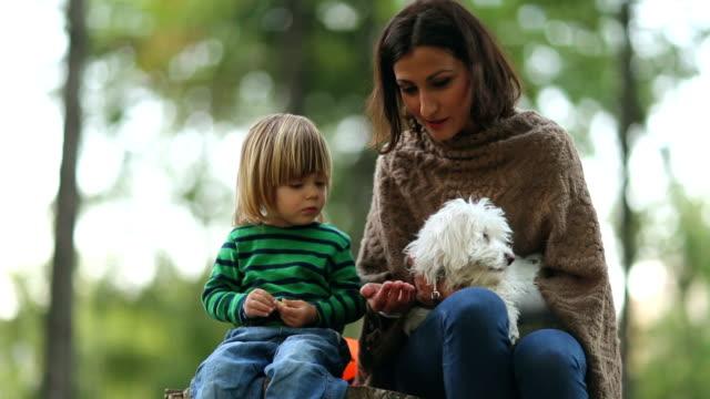 Little boy and a nanny feeding a dog