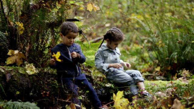 Little Boy and Girl Siblings Enjoying Nature