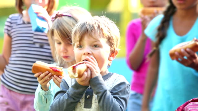 little boy and group of children eating hotdogs - hot dog stock videos & royalty-free footage