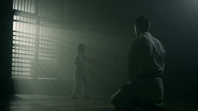 vídeos de stock e filmes b-roll de little boy and his karate teacher practicing together - artes marciais