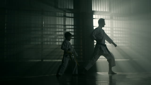 little boy and his karate teacher practicing together - autorità video stock e b–roll