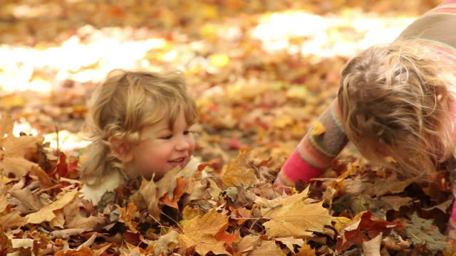 MS TD Little boy and little girl playing in autumn fallen leaves / Toronto, Ontario, Canada