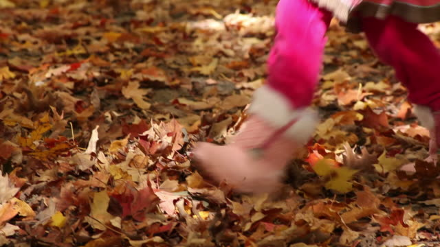 ms little boy and little girl playing in fallen autumn leaves / toronto, ontario, canada - kelly mason videos stock videos & royalty-free footage