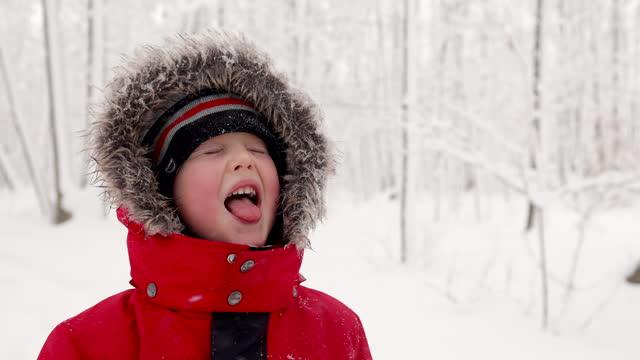 vidéos et rushes de petit garçon attrapant des flocons de neige avec sa langue dans la forêt en hiver - langue humaine