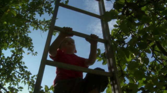 A little boy climbs a ladder.