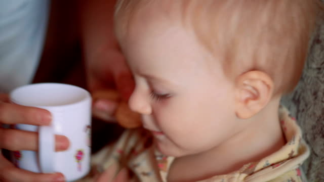 little boy drinking yogurt with  biscuits and watching cartoons on tv - buttermilk biscuit stock videos & royalty-free footage